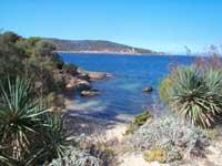 Plan Port Cros - Levant